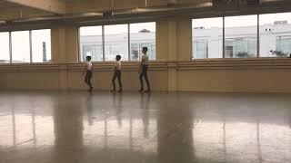 Ballet Virginia International Workshop - Ballet