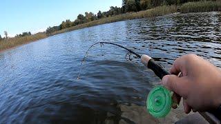 САЗАНЫ КАРАСИ ЛАПТИ РВУТ ЛЕСКУ зимняя рыбалка с лодки на боковой кивок удачная рыбалка