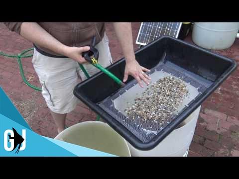 #481: How to Quickly Wash Aquarium Pea Gravel - Tank Tip