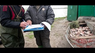 Список штрафов, которые можно легко получить на рыбалке