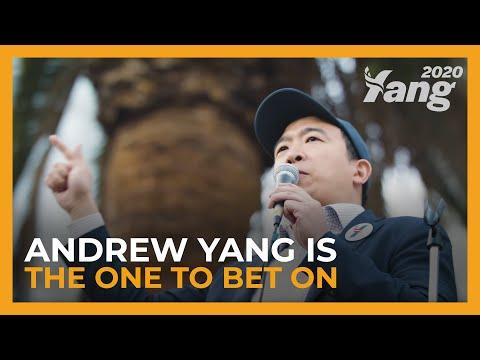Andrew Yang presidential campaign, 2020 - Ballotpedia
