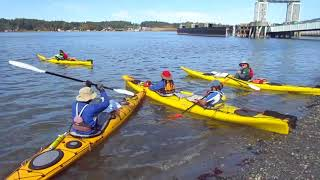 Video - Sea Kayak Guide Trips