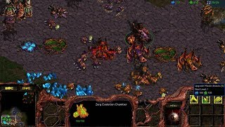 StarCraft: Remastered Co-op Campaign Zerg Mission 1 - Among the Ruins