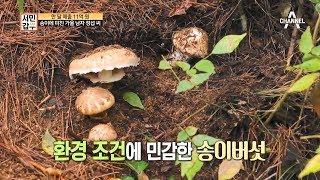 [교양] 서민갑부 147회_171012