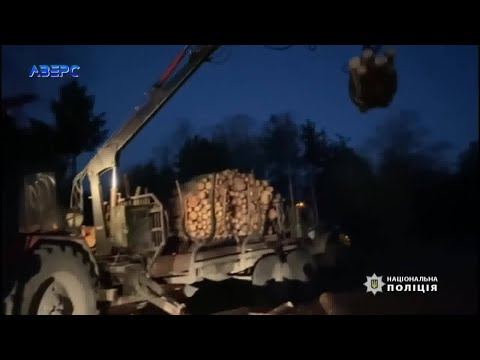 ТРК Аверс: Масштабні обшуки на Камінь-Каширщині: на обійстях людей шукають незаконну деревину