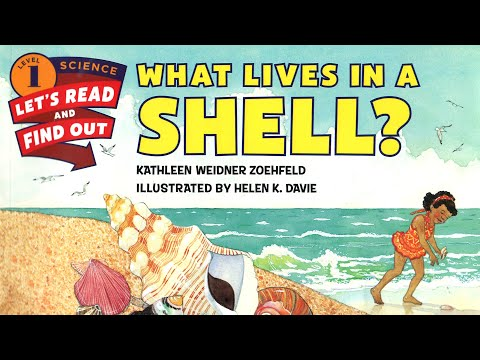 Story Time: What Lives In A Shell? // NYC Early Learning Company, Inc.
