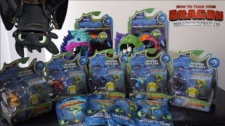 How to Train Your Dragon 3 Mystery Minis!! | Hidden World Mystery Dragons!!