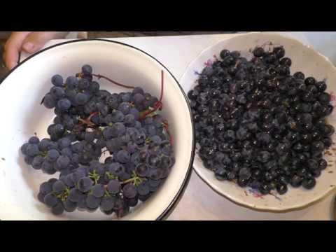 виноград сорта Изабелла  польза свежевыжатого сока