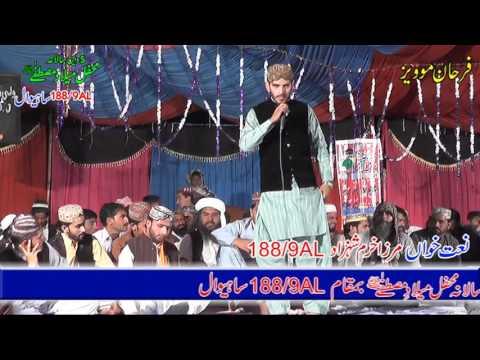 mehfil-milad-e-mustafa-chak-188-part-8