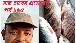 Question and answer on fish cultureред Part 165ред ржорж╛ржЫ ржЪрж╛рж╖рзЗрж░ ржкрзНрж░рж╢рзНржирзЛрждрзНрждрж░ред ржкрж░рзНржм рззрзмрзлред Abeed Lateef