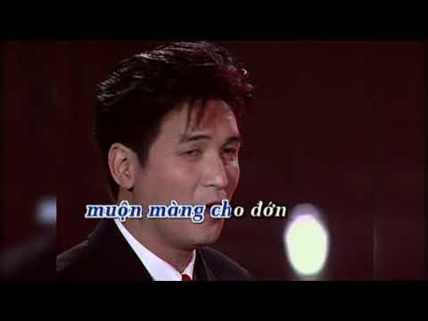 Karaoke   Như Đã Dấu Yêu (Hương Lan & Nguyễn Hưng)