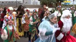 видео Елки новогодние в Одессе