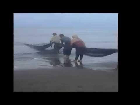 anek nelayan    cut intan ibnu arhas
