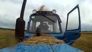 МТЗ-80 и КИР-1,5М на измельчении соломы озимой пшеницы | оставляем органику в поле