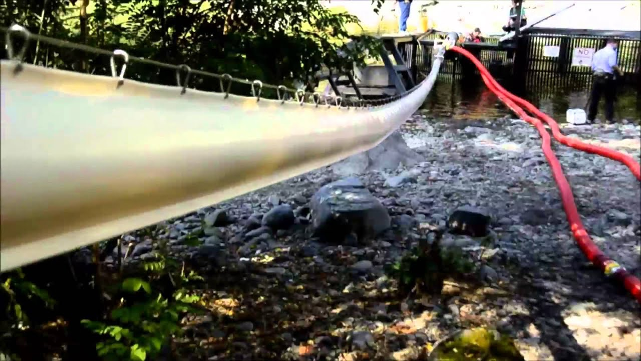 Washington state testing 39 salmon cannon 39 to help fish for Cannon fish company