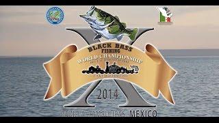 Х Чемпионат Мира Мексика-2014: взгляд А.Легезо / X World Championship, Mexico, Alexey's Legezo view