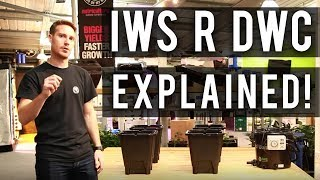 IWS R DWC Explained (Featuring Craig from NUT Systems)
