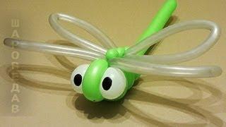 Стрекоза из воздушных шаров Твистинг Dragonfly from of balloons.Twisting
