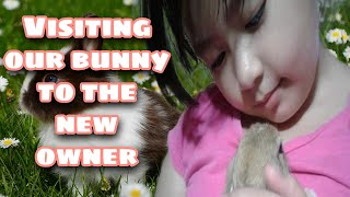 Cute Rabbit - Meet the New Owner Madelyne (The Cute Girl)-Rabbit Farming, Facts and Care