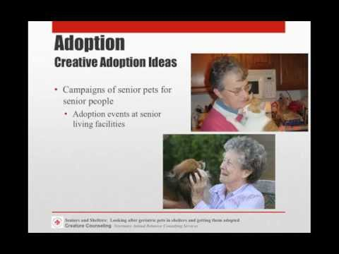 Seniors & Shelters - Geriatric Pets And Getting Them Adopted - Full Video - Conference Recording