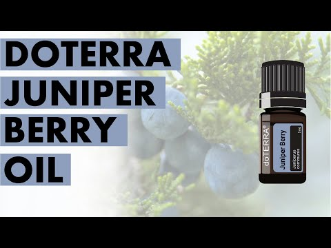 juniper-berry-essential-oil:-remarkable-benefits-and-uses