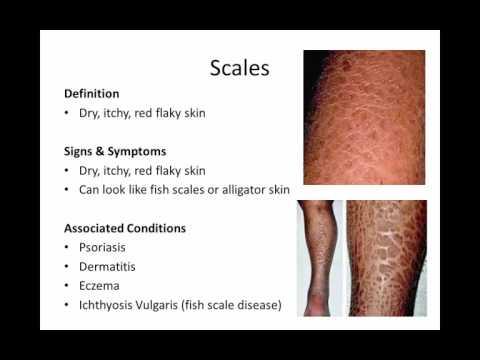 Unit 5 - 4. Dermatological Conditions