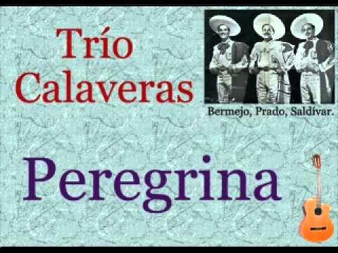 Trío Calaveras: Peregrina  -  (letra y acordes)