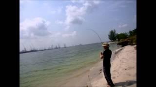 Fishing in Singapore 钓鱼 12