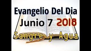 Evangelio del Dia- Jueves 7 Junio 2018- El Amor A Dios- Sangre y Agua