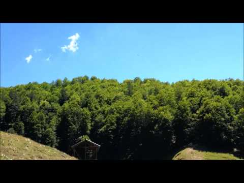 Imperial eagles in the Macedonian mountains (24-7-2013)