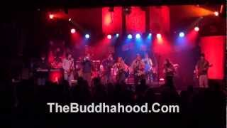 Buddhahood ~  Purify ~ January Thaw 2013 Water Street Music Hall Rochester NY