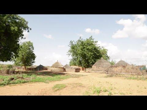 Niger Smart Villages