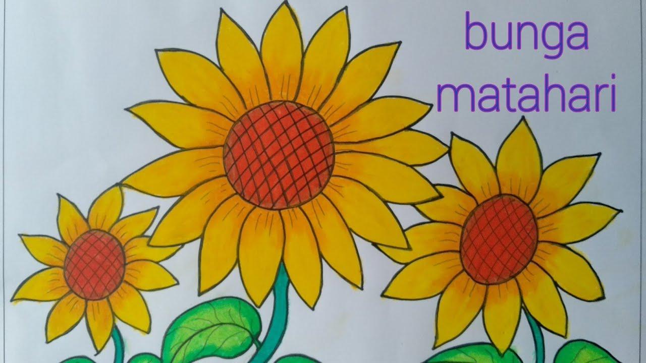 Menggambar Bunga Matahari Cara Menggambar Dan Mewarnai Bunga Yang Mudah Youtube