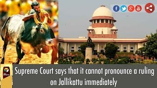 No Jallikattu This Year As Supreme Court Rules Out Verdict Before Pongal