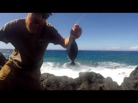 Fishing Hawaii Feb 2017