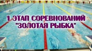 """1 этап соревнований """"Золотая рыбка"""""""