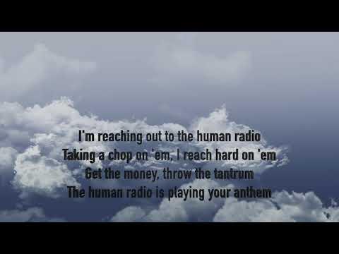 Shinedown Human Radio Lyrics
