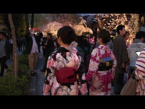 京都観光 Kyoto Sightseeing 京都旅遊 교토 관광 เกียวโตการชมทิวทัศน์