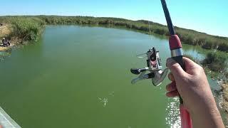 Мелкую рыбу отпускаем а крупную в спичечный коробок аккуратно складываем Рыбалка в Калмыкии ч 1