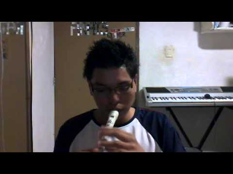 Dragon ball opening flute cover