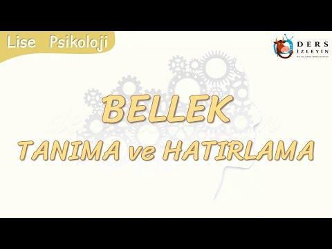 BELLEK / TANIMA VE HATIRLAMA