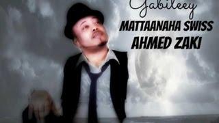 Ahmed Zaki 2013 GABILEEY