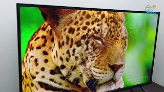 "TCL 40"" S6500 Smart Android TV - Quik Review"