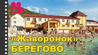 видео берегово отели