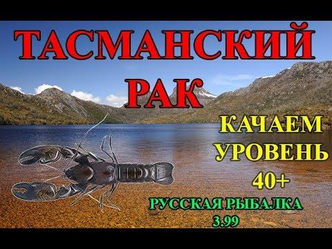 Ловим наживки моллюск, лягушку и пресноводного краба на базе ахтуба в игре русская рыбалка 3.
