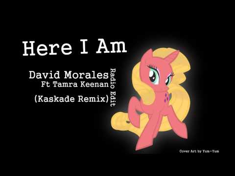 Here I Am - David Morales Ft. Tamra Keenan (Kaskade Remix) Radio Edit