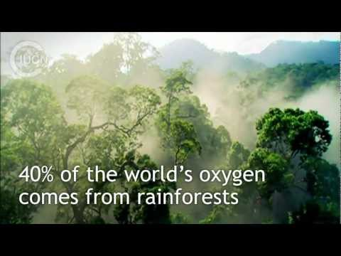 What Is IUCN? (English)