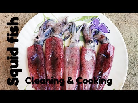 How to clean squid | How to cook squid | Squid fish cleaning and cooking