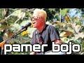 KANCIL NAKAL - PAMER BOJO (CENDOL DAWET) - RPR PRO LIVE WILAYU,SEMANU