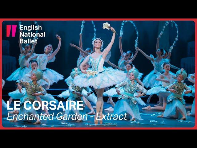 Le Corsaire: Alina Cojocaru in the Enchanted Garden scene (extract) | English National Ballet